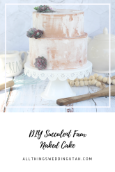 succulent faux naked cake (1)