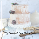 succulent faux naked cake